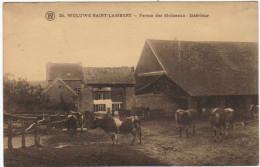 03049g FERME Des MOINEAUX -  Woluwe-Saint-Lambert - St-Lambrechts-Woluwe - Woluwe-St-Lambert
