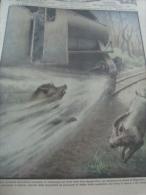 DOMENICA DELL'AGRICOLTORE 1932 MIGLIARINO - Boeken, Tijdschriften, Stripverhalen