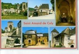 CP24571  - SAINT AMAND DE COLY - Village Pittoresque - Carte Souvenir, Divers Aspects - Autres Communes
