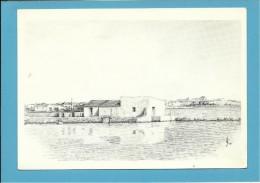 O MOINHO De MARÉ Da TORRINHA - Watermill - RIA FORMOSA - ALGARVE - Portugal - 2 SCANS - Molinos De Agua
