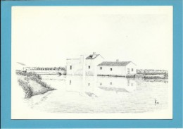 O MOINHO De MARÉ Dos CALIÇOS - Watermill - RIA FORMOSA - ALGARVE - Portugal - 2 SCANS - Molinos De Agua