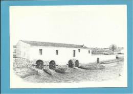 O MOINHO De MARÉ Dos PENTEADOS - Watermill - RIA FORMOSA - ALGARVE - Portugal - 2 SCANS - Molinos De Agua