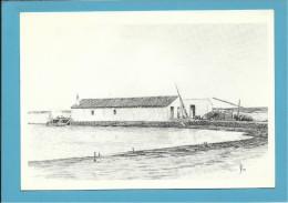 O MOINHO De MARÉ De FRANCISQUINHA GRELHA - Watermill - RIA FORMOSA - ALGARVE - Portugal - 2 SCANS - Molinos De Agua