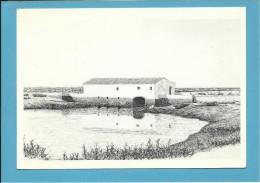 O MOINHO De MARÉ De JOÃO PEDRO GRELHA - Watermill - RIA FORMOSA - ALGARVE - Portugal - 2 SCANS - Molinos De Agua
