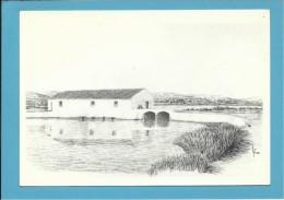 O MOINHO De MARÉ Do LIVRAMENTO - Watermill - RIA FORMOSA - ALGARVE - Portugal - 2 SCANS - Molinos De Agua