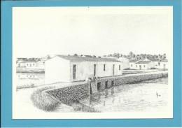 O MOINHO De MARÉ Do JOSÉ GUERREIRO - Watermill - RIA FORMOSA - ALGARVE - Portugal - 2 SCANS - Molinos De Agua