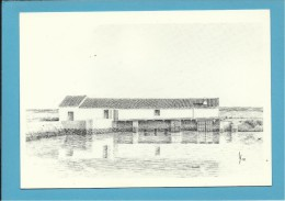 O MOINHO De MARÉ Dos CAVACOS - Watermill - RIA FORMOSA - ALGARVE - Portugal - 2 SCANS - Molinos De Agua