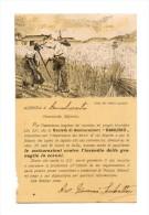 SOCIETA' DI ASSICURAZIONI DANUBIO - AZENZIA DI RACALMUTO - Pubblicitari