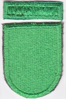 FULL SIZE  BERET  FLASH  And  RECOGNITION  BAR  10 Th.  SPECIAL  FORCES  GROUP - Patches