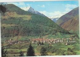 Cpsm Italie   Trentino  Male Panorama Verso Val Di Rabbi Con Cime Gamberai E Castel Pagan - Italia