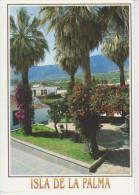 (AKH386) LA PALMA. LOS LLANOS DE ARIDANE. PLAZA DE ELIAS SANTOS - La Palma