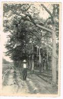 Oud Turnhout - Lierman - Oud-Turnhout