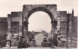 CPA Tebessa - Les Ruines De La Basilique Romaine - 1960 (4438) - Tebessa