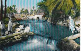 CPSM Scenes Et Types - Laveuses Dans L´oued - 1960 (4439) - Algerien