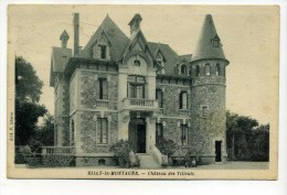 CPA 51 :   RILLY LA MONTAGNE   Château Des Tilleuls    1938   A  VOIR  !!!!!!! - Rilly-la-Montagne