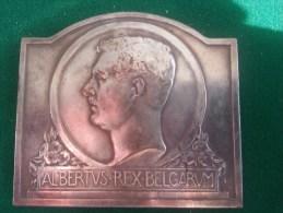 1e Prijs Huisbouw, Alfons Raymaekers 1936 (Bonnetain), 107 Gram (medailles0073) - Altri