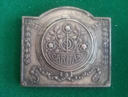 Caritas, Jubelfeesten 15/12/1928, Ter Bestrijding Der Tuberculose, Antwerpen (Fisch), 56 Gram (medailles0086) - Belgique