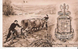CHANTIERS DE LA JEUNESSE N° 20 GROUPEMENT TURENNE   LAPLEAU (CORREZE) - Weltkrieg 1939-45