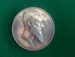 XXIe Belgische Turnbondsfeest, 6/1894 (Baetes), 83 Gram (medailles0096) - Belgique