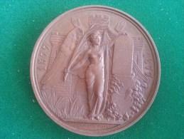 Stad Antwerpen, Jubelfeest Der Geboorte P.P. Rubens, 1877, (Ed. Geerts), 169 Gram (medailles0098) - Sonstige