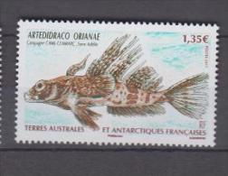 Terres Australes Et Antarctiques Françaises YV 583 N 2011 Artedidraco - Poissons