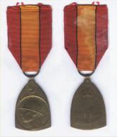 Médaille Commémorative Guerre De 1914 - 1918 - Belgique