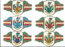 Fabrica de Tabacos/Alvaro/Cigarcanar ia/ Colecccion Heraldica/ 6 Bagues grand Format/ TENERIFE/Espagne/ Ann�es 80  CIG10