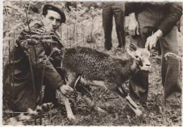 Les Réalisations Du Conseil Supérieur De La Chasse - Parc National D'Elevage De Chambord - Un Jeune Mouflon............. - Elevage