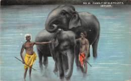 Sri Lanka  Ceylon    Family Of Elephants Being  Washed  In River - Elephants