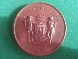 Opening Museum Schoone Kunsten, Antwerpen, 8/1890 (F. Baetes), 106 Gram (medailles0112) - België