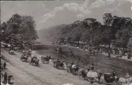 Postcard (Places) - United Kingdom England London Rollen Row Hyde Park - London