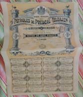 Société Française Des Pétroles De Prédéal-Téléajen (Roumanie) - Action De 100 Francs 1901/1911 (288) - Oil