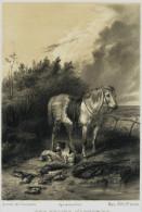 Chien- Journal Des Chasseurs ,  Mars 1954 - GRAVURE -  UNE  CHASSE  D'AUTOMNE  - Chasse ? Rare - Engravings