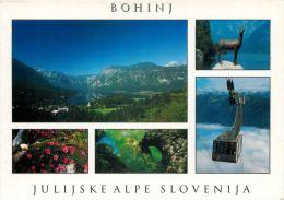 Bohinj, Slovenia Slovenija Postcard Used Posted To UK 2003 Nice Stamp - Slovenia