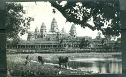 Cambodge - Angkor Wath Vue Générale   - Lfh175 - Cambodia