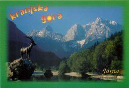 Kranjska Gora, Slovenia Slovenija Postcard - Slovenia