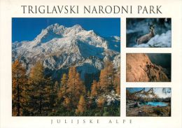 Triglav National Park, Slovenia Slovenija Postcard - Slovenia