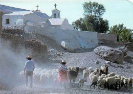 San Francisco De Chiu Chiu Church, Chile Postcard - Chile