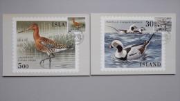 Island 691/2 Sc 665/6 YT 644/5 FA 728/9 Maximumkarte MK/MC, SST FILACEPT '88,  Vögel - Cartes-maximum