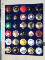 Lot De 107 Capsules De Champagne / Plaques De Muselet / Champagnerdeckel / Capsula Di Spumante - Champagnerdeckel
