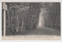 60 - CHANTILLY - La Forêt - Route Réservée à L'entrainement Des Chevaux De Courses - Chantilly