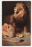 ILLUSTRATEUR . TADÉ STYKA . LES LIONS - Réf. N°1525a - - Lions