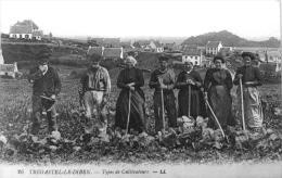 Trégastel Le Diben : Types De Cultivateurs - France