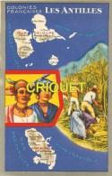 Antilles, Format Cp, Chromo Lion Noir Guadeloupe Et Martinique, Scan Recto Verso - Otros