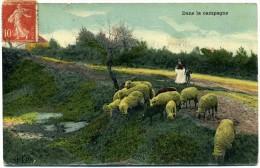 02  - Roupy -  Dans La Campagne -  Gardienne  De Moutons - France