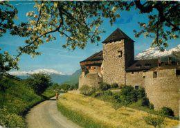 Schloss Vaduz, Liechtenstein Postcard - Liechtenstein