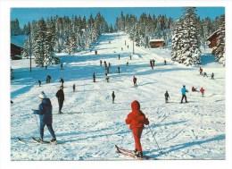 CPM - SUISSE - Piste D'arrivée Du Téléski Des RASSES  (très Animée - Nombreux Skieurs) - VD Vaud