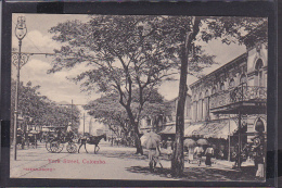 S41 /   Ceylon , Colombo Um 1910 - Ansichtskarten