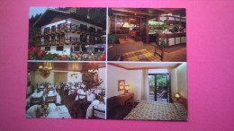 Hotel Vajolet - Mazzin Di Fassa (Trento) - Hotels & Restaurants