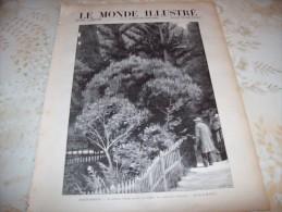 LE MONDE ILLUSTRE 5 MAI  1900 : BOERS A SAINTE-HELENE - OTTAWA - CERF-VOLANT SAVANT - Newspapers